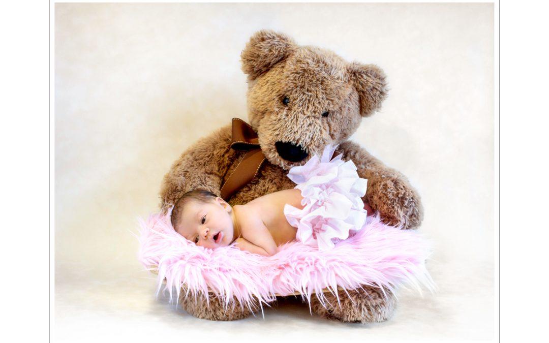 Così bella che anche l'orso non smette mai di guardarla….